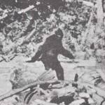 Still frame taken from famous Bigfoot video.